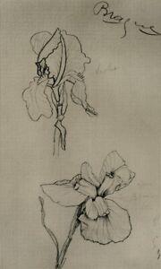 Georges BRAQUE : Les Iris - GRAVURE signée, 1950