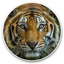 2 x Vinyl Stickers 25cm - Bengal Tiger Swimming Wild Cat  #44265