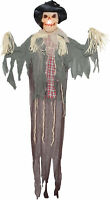 Hanging Scarecrow 6 Ft Halloween Prop Haunted House Lightup Yard Display