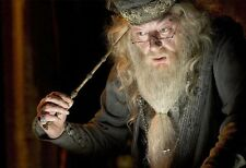 Albus Dumbledore the Elder Magic Wand
