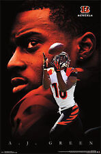 2013 AJ GREEN POSTER NFL FOOTBALL CINCINNATI BENGALS NEW 22x34 FREE SHIPPING