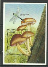 Guyana 1997 - Mushrooms / Fungi, MNH