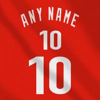 Toronto Raptors NBA Dark Jersey Custom Any Name Any Number Pro Lettering Kit