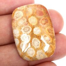 Real 34.5 Cts FOSSIL CORAL 31x22 mm Cushion Cabochon For Ring Gemstone S-33835
