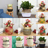 Seagrass Belly Basket Storage Plant Pot Foldable Nursery Laundry Bag Container