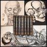 Bourgery Jacob ANATOMIE DE L'HOMME 1840 Delaunay Anatomia 7 vols Tavole MEDICINA