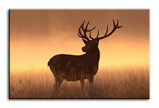 Large Wall Art Canvas Picture Print of Deer Stag Horns Framed