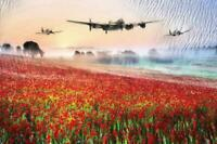Lancaster Spitfire & Poppy Canvas Print 20x30 inches