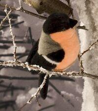 kösener 5700 - Gimpel BOUVREUIL Oisea 18 cm animal à câliner en Peluche