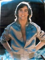 RARE SHAUN CASSIDY THE HARDY BOYS 1977 VINTAGE ORIGINAL TV PIN UP POSTER