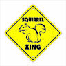 Squirrel Crossing Decal Zone Xing Tall animals hunter rodent joke nut lover