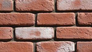 Decorative Brick Slips,Wall Cladding,Stone Tile Gypsum Imitation Tiles (Malmo)
