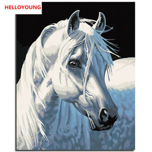 Digital Drawing Painting White Horse Oil Paintings Scroll Paintings Home Decor