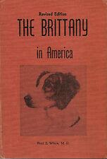 Brittany in America, White, dog breed, rare 1965
