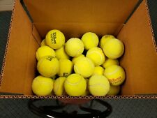 50 Used Tennis Balls for Schools, Chairs & Dog Toys