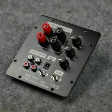 TPA3118 2.1 Active Module for Installing a Digital Amplifier