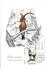 Carte Maximum Card Horned Animal Spain