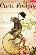 Postcard French Vintage Shabby Chic Style, Frog / Toad on Bicycle, Floral 6K