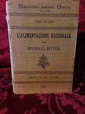 Libro Biblioteca Agraria L'Alimentazione Razionale Animali Bovini Tito Poggi