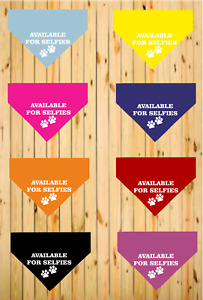 Funny Available For Selfies Printed Dog Pet Tie Bandana 8 Colours 3 Sizes