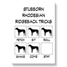 Rhodesian Ridgeback Stubborn Tricks Fridge Magnet Steel Case Funny