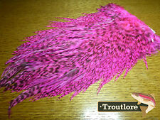 Whiting Farms 4b Rooster Saddle Grizzly Pink Fly Tying Cape Feathers