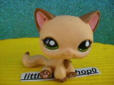ORIGINAL Littlest Pet Shop  CAT 2037