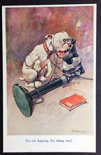 BONZO DOG POSTCARD I'm Not Arguing STUDDY Artist Signed RPS 1002 Telephone 155