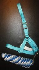 Alpaca MALE/Sire Nylon Turquoise Halter with Coordinating cotton Lead..USA Made!