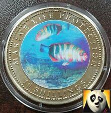 2003 SOMALIA 10 SCELLINI AUSTRIACI Vita Marina PROTEZIONE COLORATA Harlequin Pesce Coin