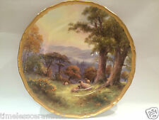 Royal Worcester Hand Painted Plate Signed H Davis