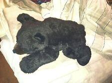Aurora Teddy Bear Style Black Bear Yanina Link