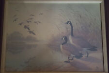 """Diane Pierce """"Canadian Geese"""" Signed numbered 89/450 Limited edition Lithograph"""