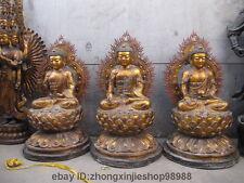 44 China Buddhism bronza Gilded three Amitabha Sakyamuni buddha Statues set