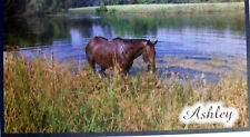 HORSE CHECKBOOK COVER PERSONALIZED