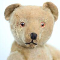 Pre-War Antique Bing Teddy Bear 1910 Character Hunchback Mohair Bear w Dog Ours