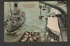 post card ships French Dreadnought stocked with live cattle for transport