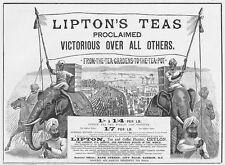 LIPTON'S TEAS from Tea Gardens to the Tea Pot - Victorian Advert 1893
