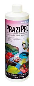 Hikari Aquarium Solutions Prazipro - Free Ship
