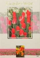 5 St. Osterkarte 137530-2 11,5 x 17 cm Ein frohes Osterfest mit Umschlag