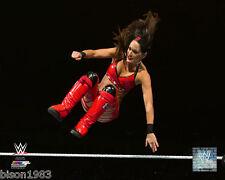 RARE WWE Brie Bella Twins Drop kick pose 1  8x10 PHOTO studio