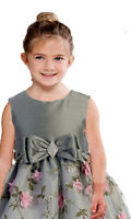 Posh Silver/Pink Floral Embroidered Flower Girl Holiday Dress, Crayon Kids USA
