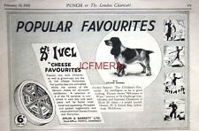 1938 St. IVEL Cheese Advert: COCKER SPANIEL - 'Popular Favourites' Print Ad