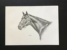"Bold Ruler SKETCH 15"" x 11"" Secretariat  Horse Racing"