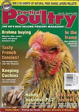 Practical Poultry Chicken Magazine Brahma Buying French Fancies Keeping Cochins