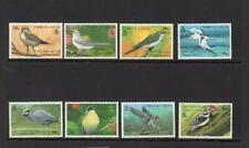 (G932) TURKS & CAICOS IS :1990 Birds set  MNH MORE LISTED