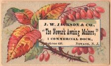 Victorian Trade Card-J W Jackson & Co Awning Makers-Newark, NJ-Berries & Thorns