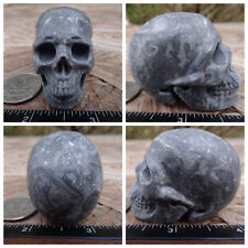 """2.0"""" Chinese Crazy Lace Skull Carved Stone 3.4oz 97.3g Crystal Healing Realistic"""