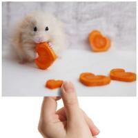 "Cute Hamster Love Heart Small Photograph 6"" x 4"" Art Print Photo Fun Gift #8297"