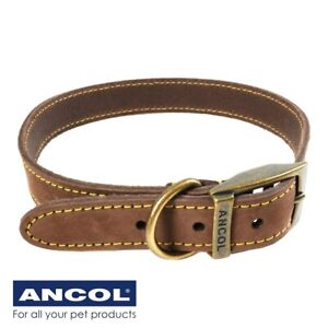 DARK BROWN REAL LEATHER DOG COLLAR 45cm - 54cm Boxer Collie Dalmatian MADE IN UK